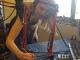 Megan Heyn Background and Bio